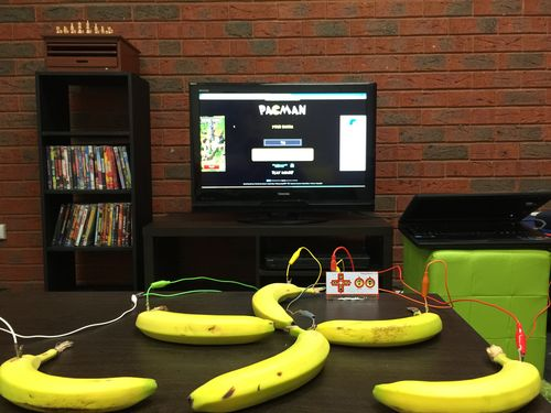 Bananas - Makey Makey