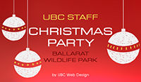 Blog - UBC Staff Christmas Party